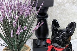 bulldog and purple flowers
